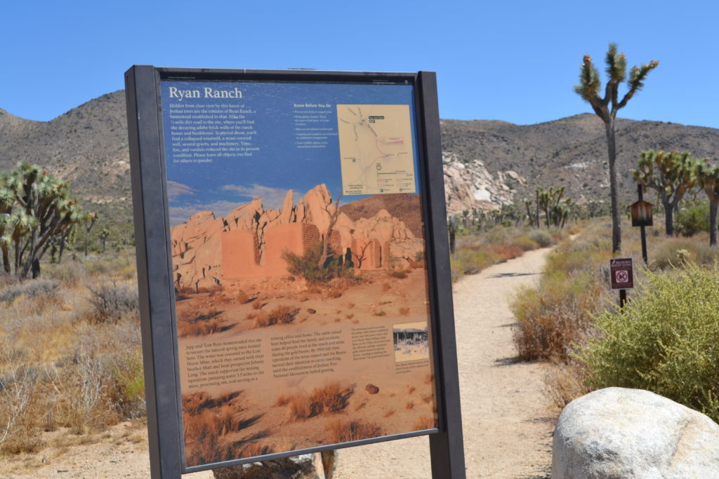 Joshua-Tree-National-Park-climbing-hiking-camping-adventure-tour-ryan-ranch-trailhead-gold-brick-house-3