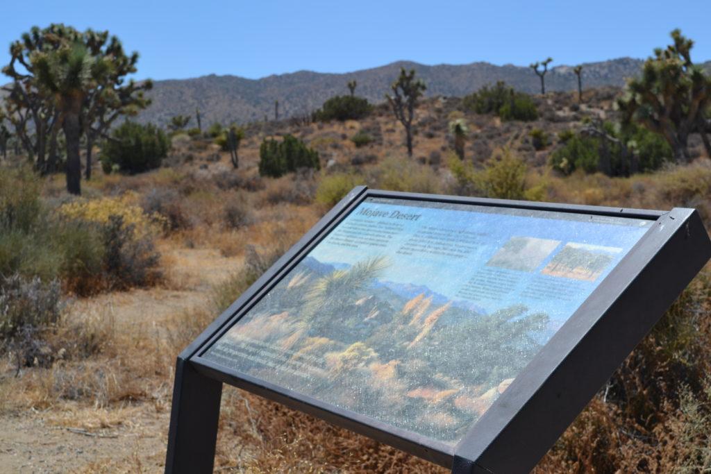 joshua-tree-national-park-adventure-tour-climbing-hiking-camping-walking-mojave-desert-plaque