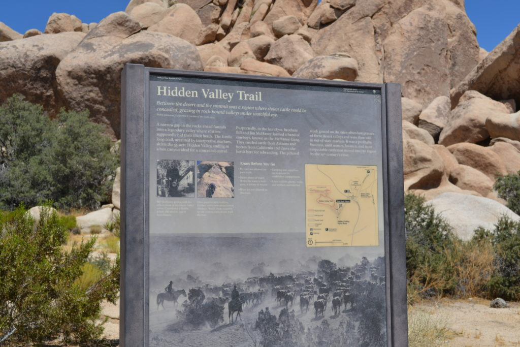 joshua-tree-national-park-camping-hiking-climbing-tour-adventure-hidden-valley-picnic-area-2