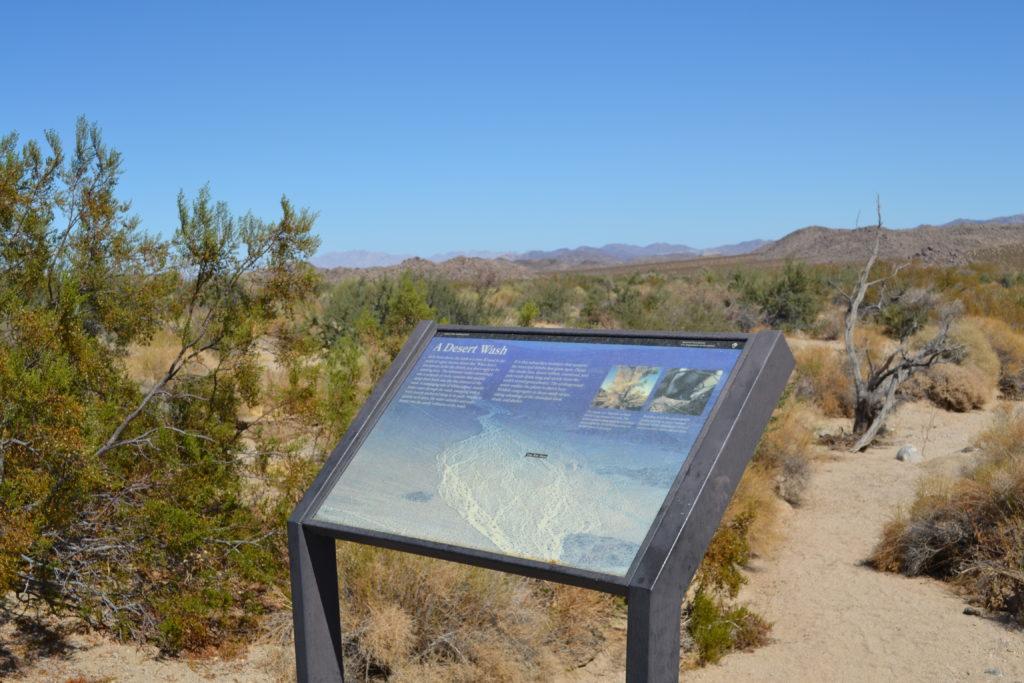 joshua-tree-national-park-climbing-hiking-camping-adventure-tour-a-desert-wash-plaque-2