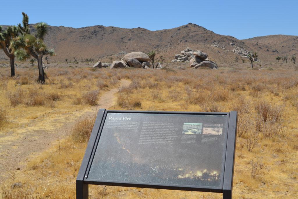 joshua-tree-national-park-hiking-camping-climbing-adventure-tour-rapid-fire-plaque