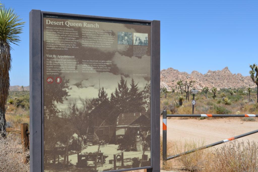 joshua-tree-national-park-hiking-climbing-camping-tour-adventure-echo-t-trailhead-Desert-Queen-Ranch-Keys-Ranch