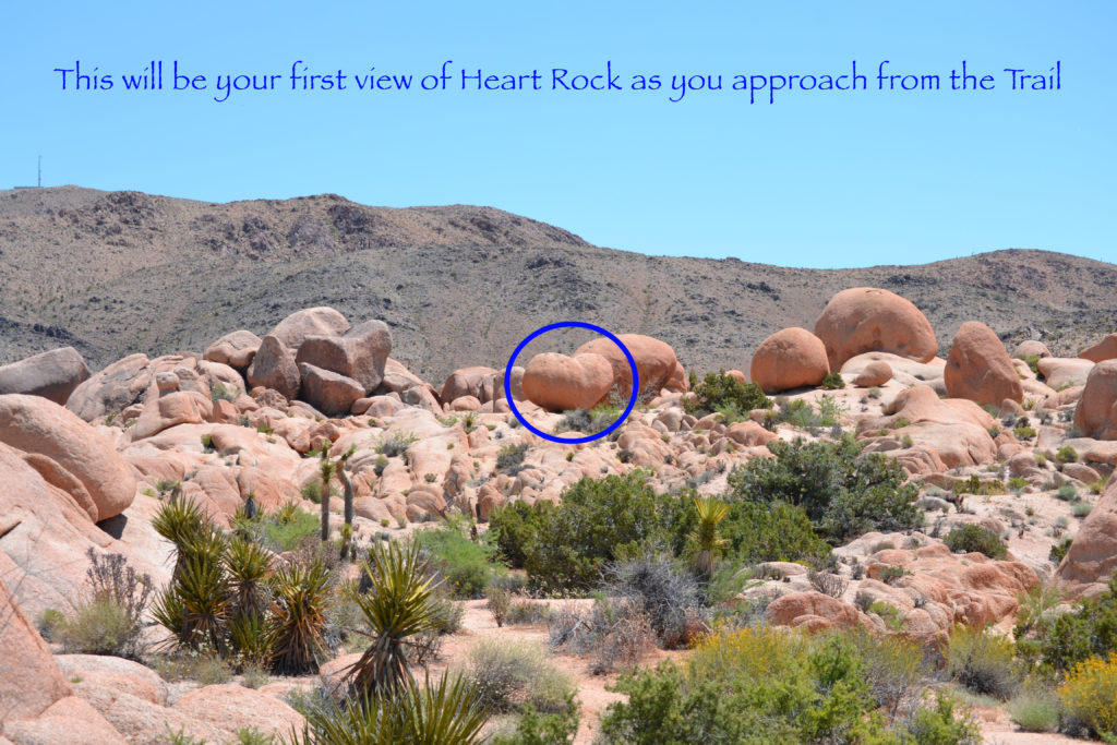 joshua-tree-national-park-climbing-camping-hiking-adventure-tour-heart-rock-front-2